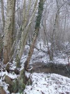 snow stream