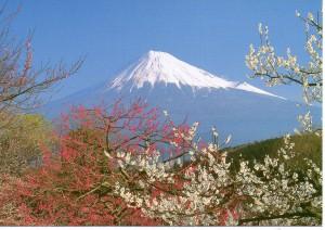 Mt Fuji001