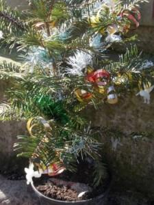 parsac tree