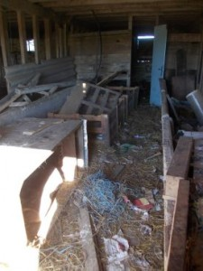 poultry shed clear up