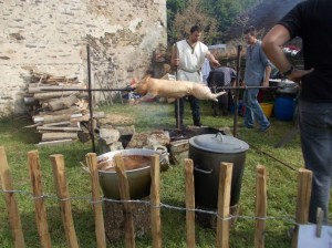 gaulish pigroast