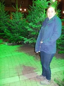 bordo novdec caiti trees
