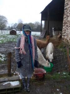 winter farm chore gear