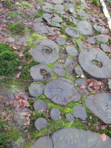 parelles tree rings slippy path