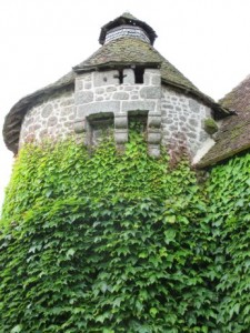 villemonteix ivy tower