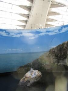canada biodome gulf roof
