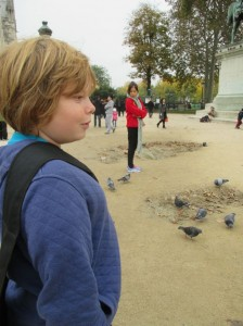 parisoct rors watch pigeons
